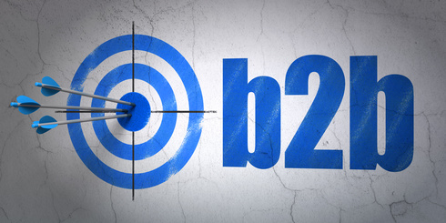 Success business concept: arrows hitting the center of target, Blue B2b on wall background, 3D rendering