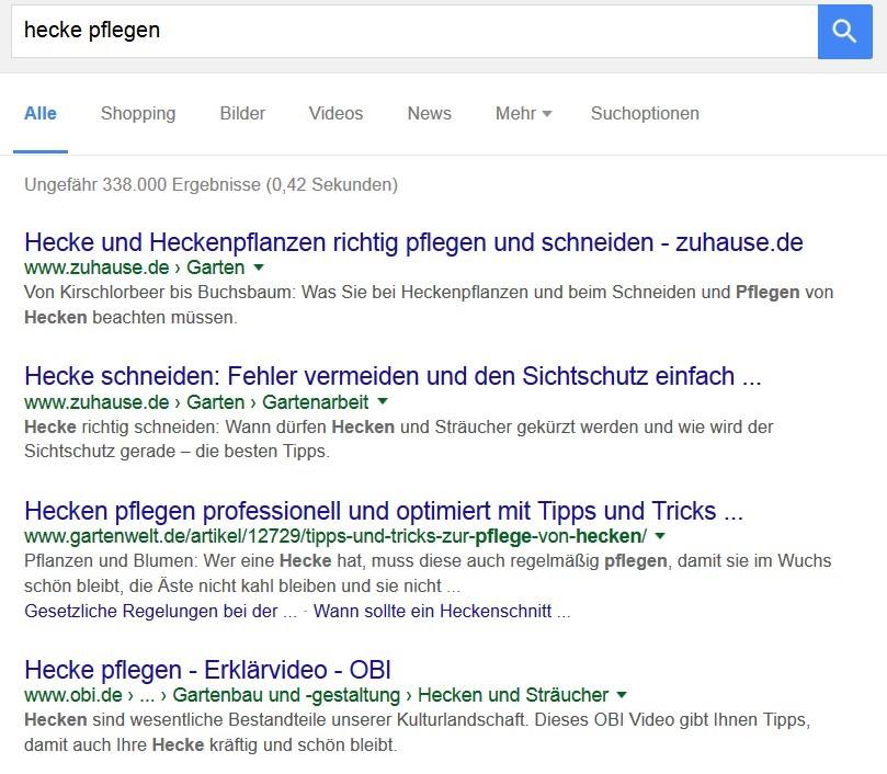 hecke-google-screen